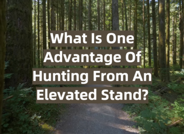 What Is One Advantage Of Hunting From An Elevated Stand?